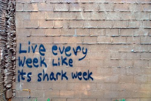 Shark-week-721