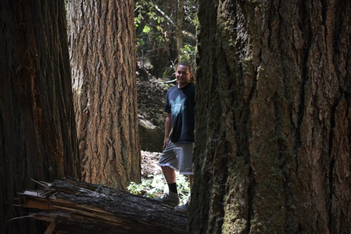 Harrisen is dwarfed by a CA Redwood