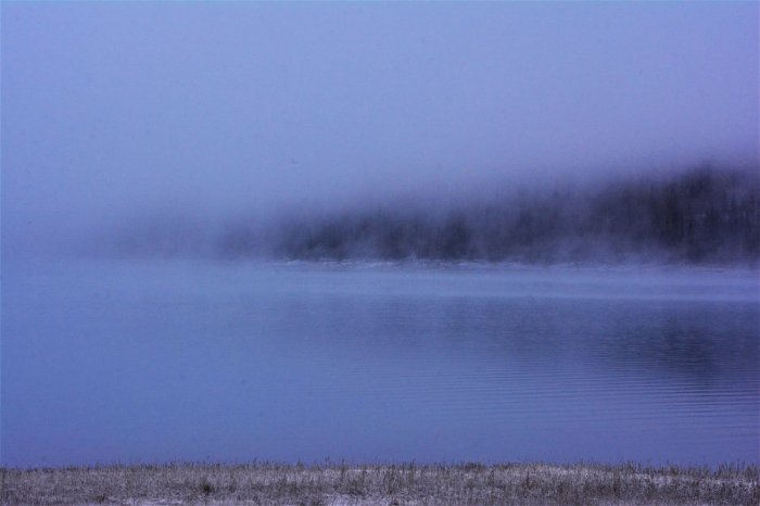 I love this thick fog view of Lake Eklutna