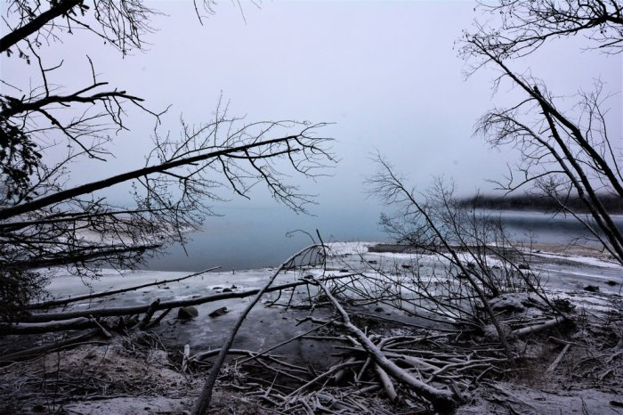The chilly, foggy scene at Lake Eklutna